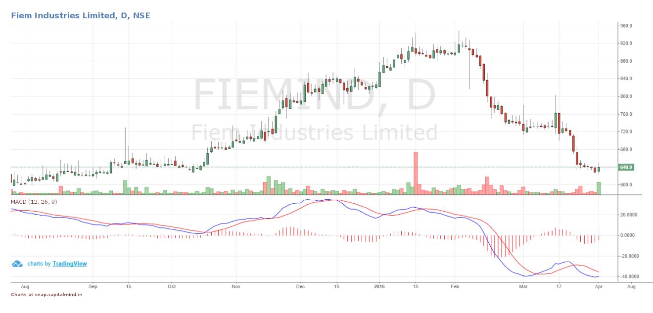 Fiem Industries Share Price