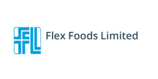 Flex Foods Logo3